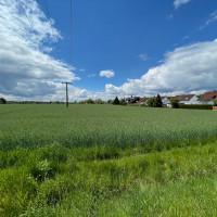 geplantes Baugebiet Oberlohe